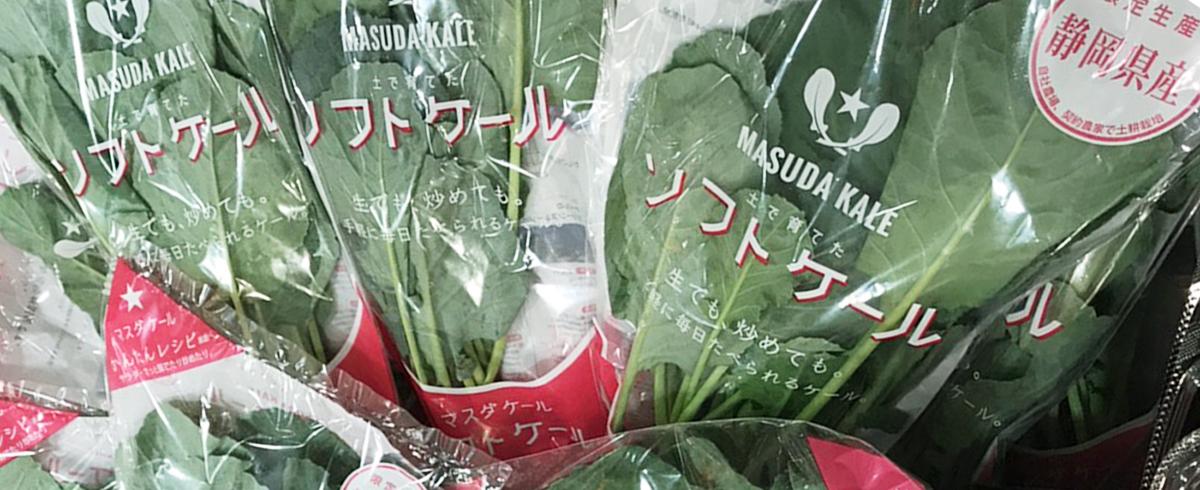 7/14~15 静岡県のイオンモール市野店で『マスダのソフトケール試食会』を開催します。